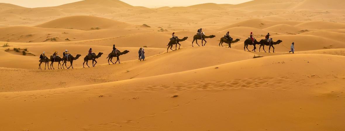 Ziel des Projektes ist, küstennahes Wüstenland in Ackerland umzuwandeln.
